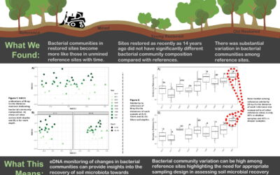 Soil DNA chronosequence analysis shows bacterial community re-assembly following post-mining forest rehabilitation